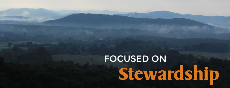 Focused on Stewardship